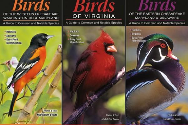 BirdGuides-cover-lg