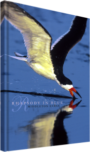RhapsodyInBlue-cover-3d-lg