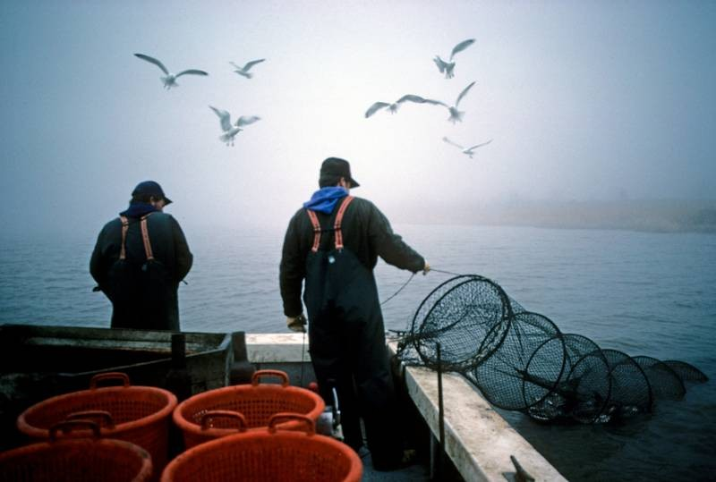 Fish Finders