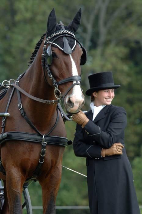 Equine Elegance